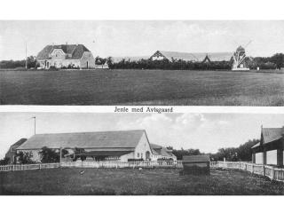 Jenle-med-avlsgård